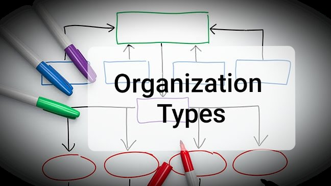Types Of Organisation - Business Management Dissertation Help